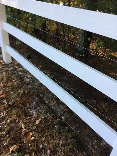 Fence Part 3 110619 (9)
