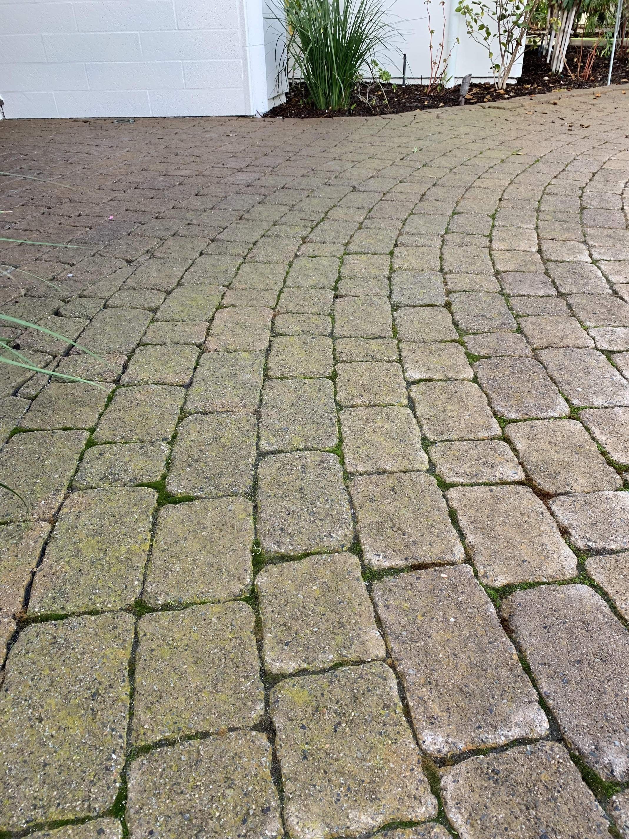 Removing Moss Inbetween Pavers