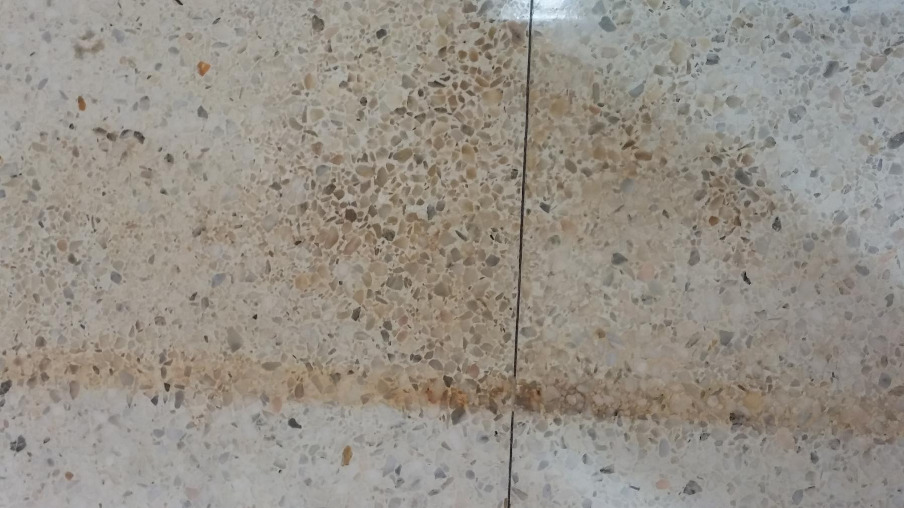 F9 On Terrazzo Floor Commercial Pressure Washing Resource